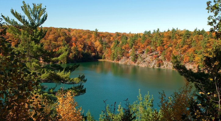 Lake with green water in autumn.