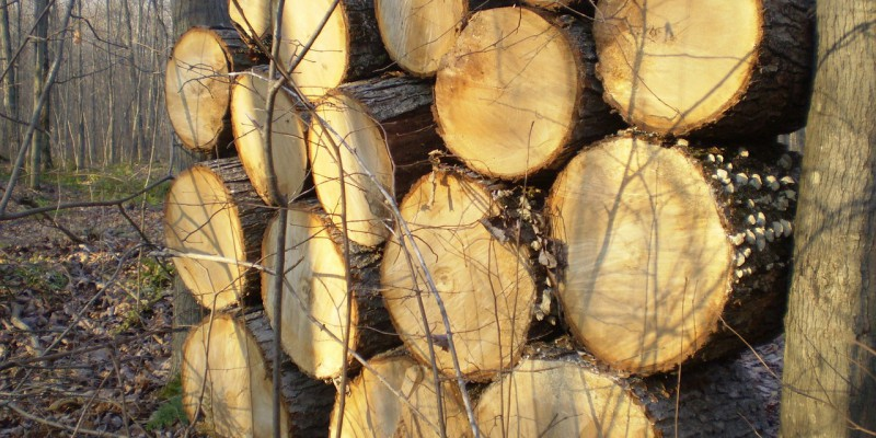 firewood-82945_1280